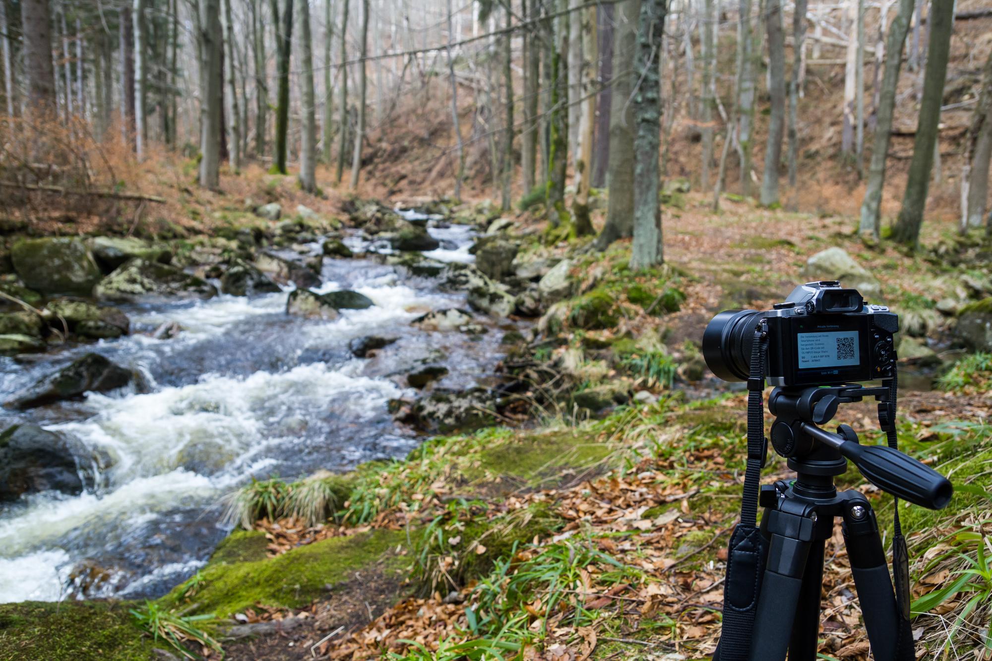 Fotowandern im Harz Bodetal Selketal Nationalpark